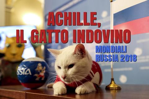 gatto-achille-mondiali-russia-2018-vincitore